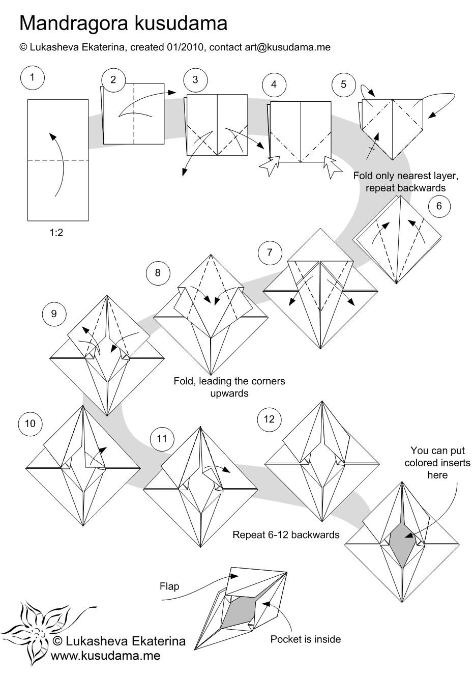 Diagram for Mandragora kusudama