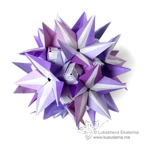 Starflower sonobe