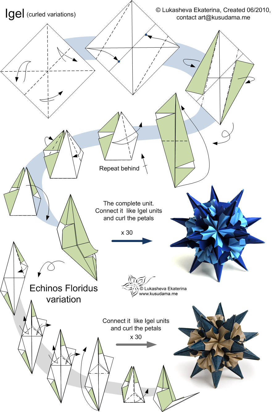Diagram for Echinos_floridus kusudama